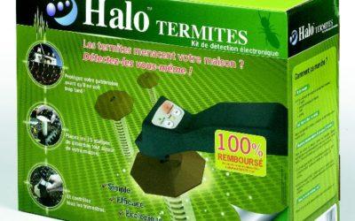 Détecter soi-même les termites