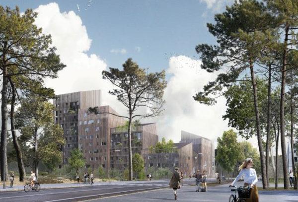 « Les Bois d'Angers » : un ensemble immobilier en bois