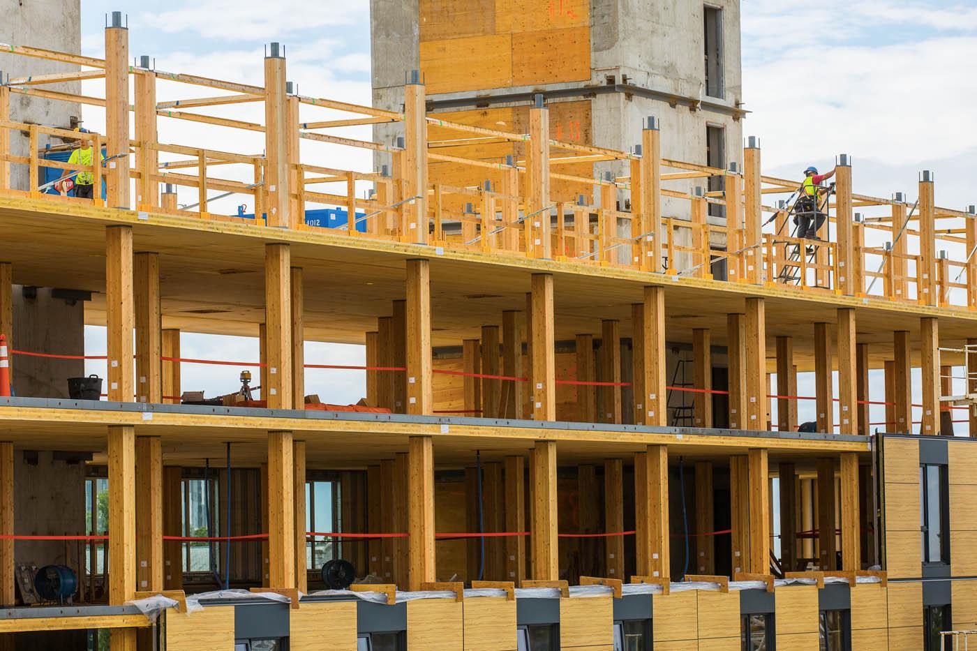 Le plus grand immeuble en bois du monde d tails de for Immeuble bureaux structure bois