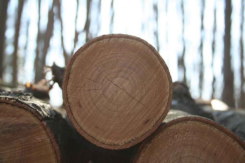 Le chauffage domestique au bois : marchés et approvisionnement