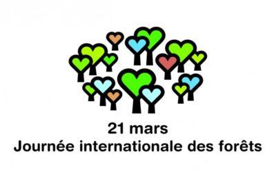 La Journée internationale des forêts est de retour en 2016