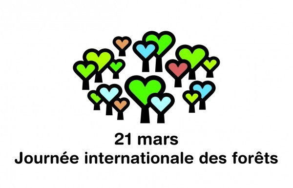 Journée internationale des forêts est de retour en 2016