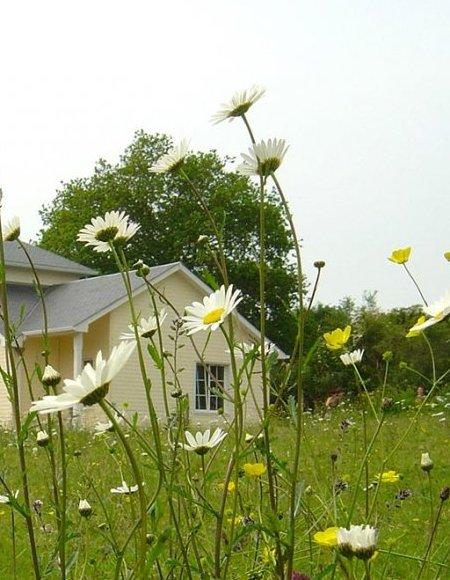 Sweetwood Homes : agence de conseil en architecture bois La Baule, Guérande et Saint-Nazaire