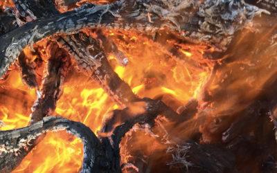Le chauffage au bois, indispensable à la réduction de la pointe de consommation électrique et des consommations fossiles