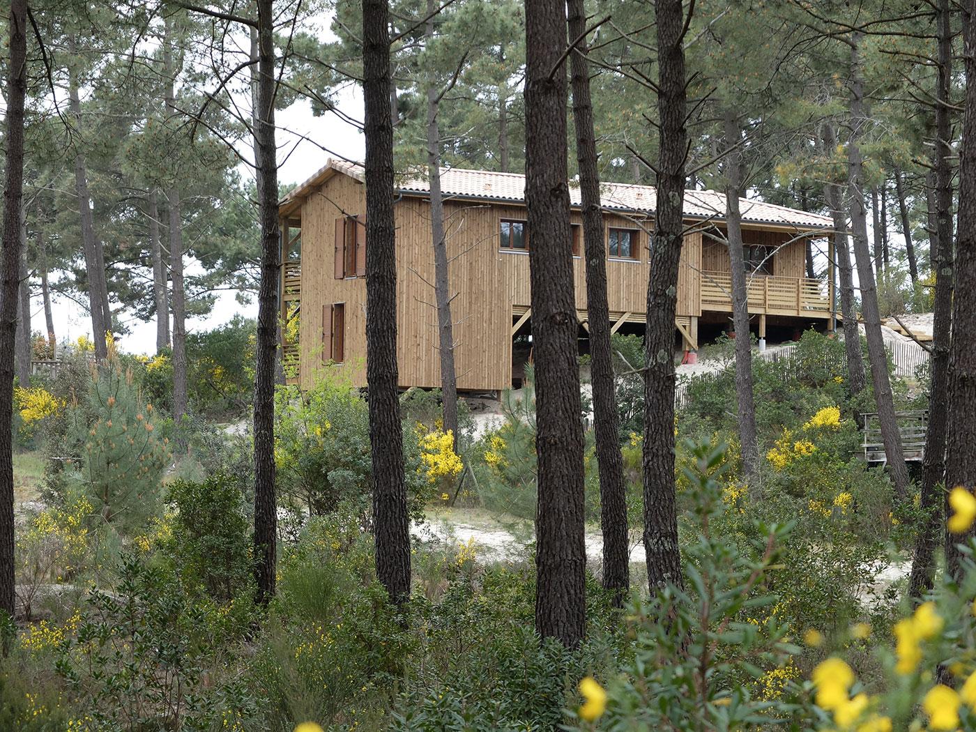 une maison bois sur pilotis dans une pin de en aquitaine par ami bois la maison bois par. Black Bedroom Furniture Sets. Home Design Ideas