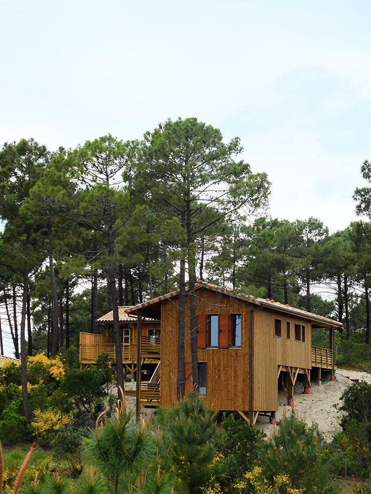 Une Maison Bois Sur Pilotis Dans Une Pinède En Aquitaine Par Ami
