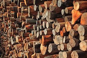 MOCOBOIS, caractériser efficacement les essences de bois pour mieux construire les maisons bois