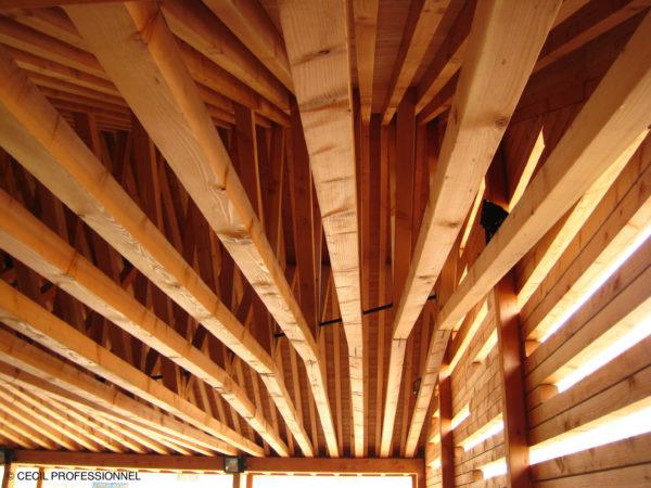 Le traitement des bois extérieurs et intérieurs TX203 CECIL Pro obtient une AMM